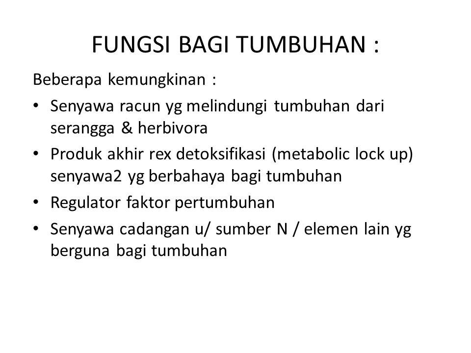 FUNGSI BAGI TUMBUHAN : Beberapa kemungkinan :
