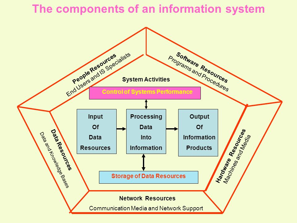 The components of an information system