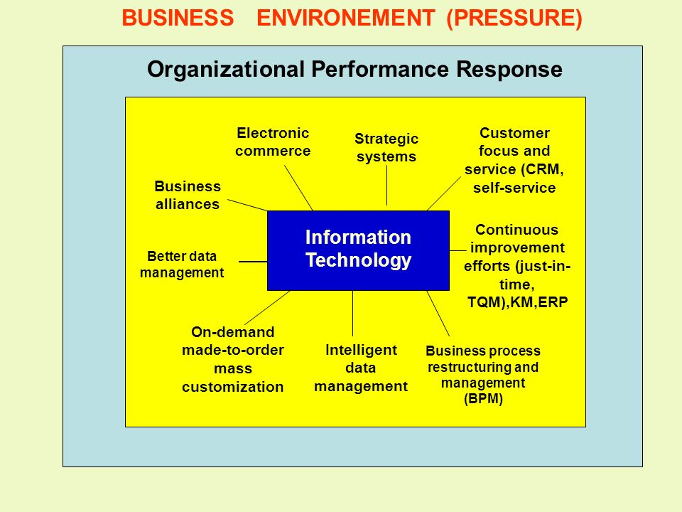 BUSINESS ENVIRONEMENT (PRESSURE) Organizational Performance Response
