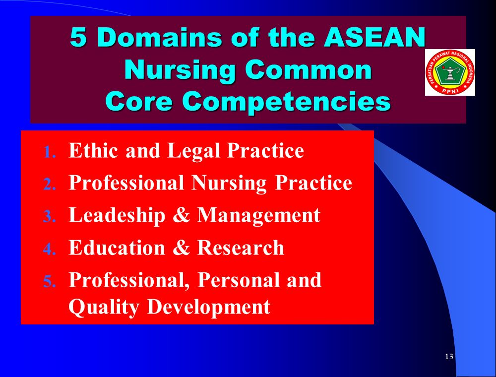 5 Domains of the ASEAN Nursing Common Core Competencies
