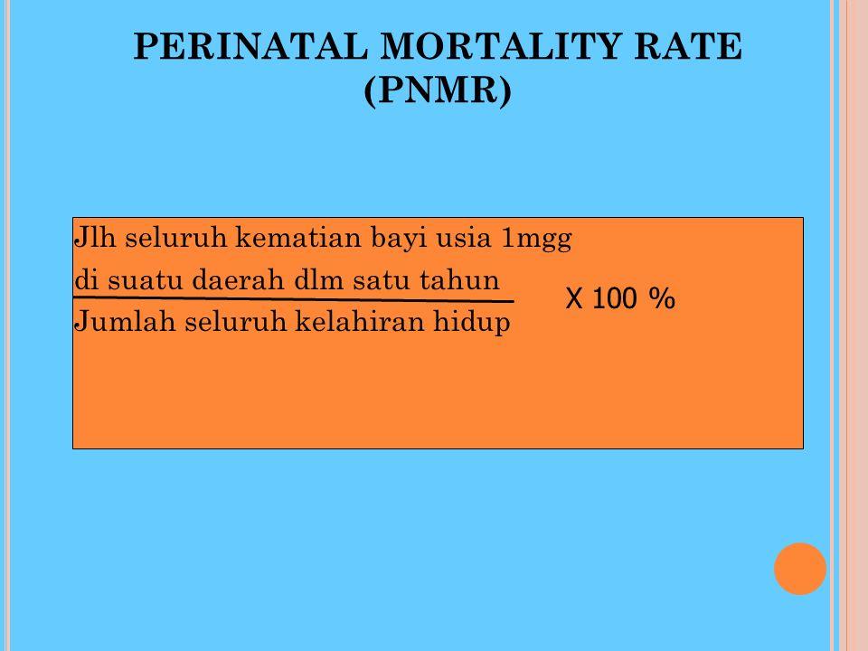 PERINATAL MORTALITY RATE (PNMR)