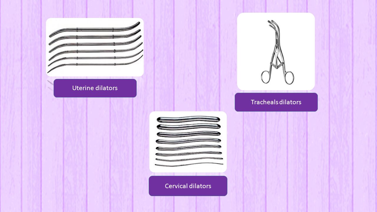 Uterine dilators Tracheals dilators Cervical dilators