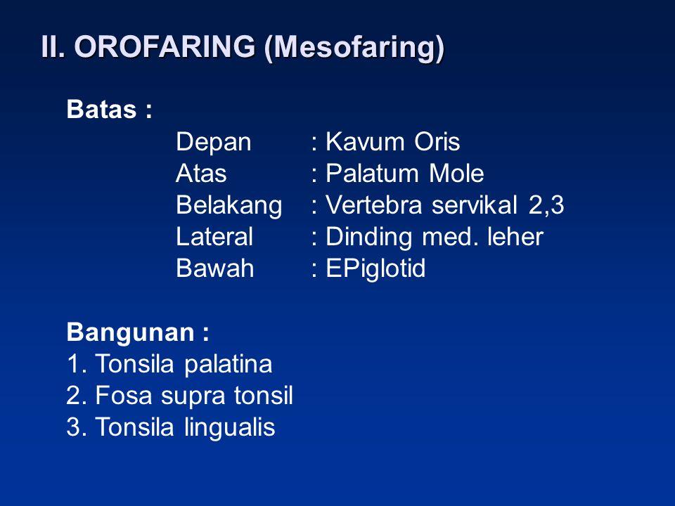 II. OROFARING (Mesofaring)