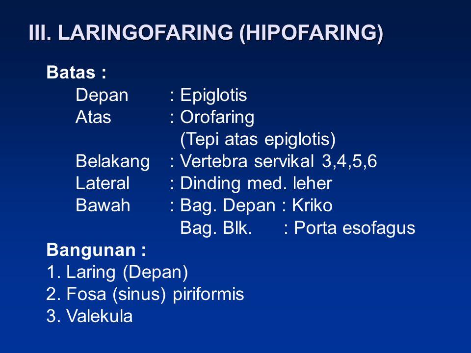 III. LARINGOFARING (HIPOFARING)