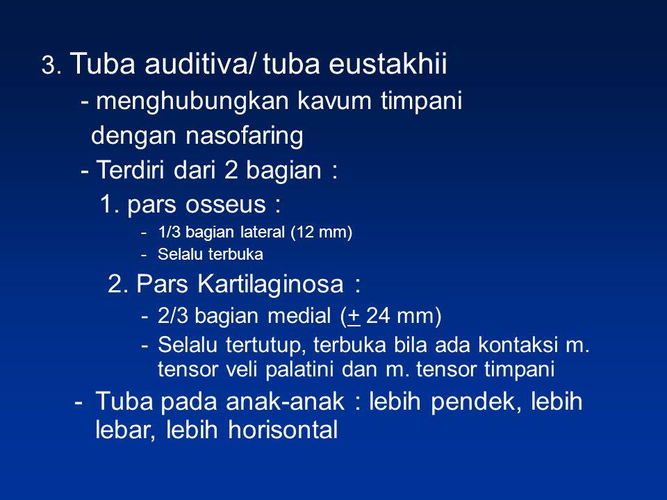3. Tuba auditiva/ tuba eustakhii - menghubungkan kavum timpani