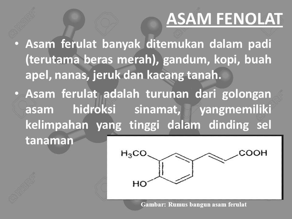 Gambar: Rumus bangun asam ferulat