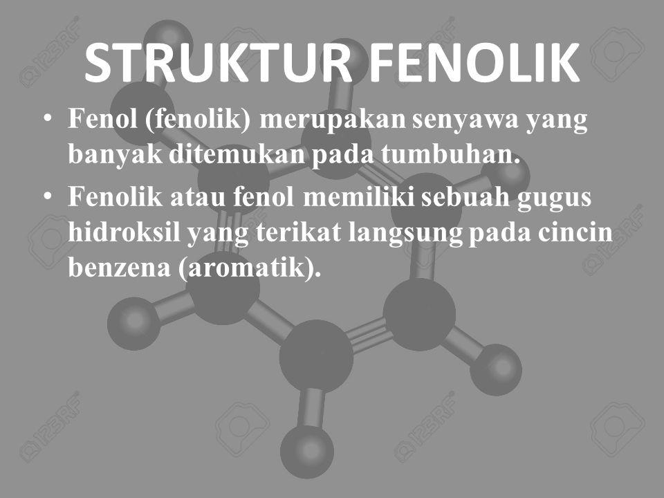 STRUKTUR FENOLIK Fenol (fenolik) merupakan senyawa yang banyak ditemukan pada tumbuhan.