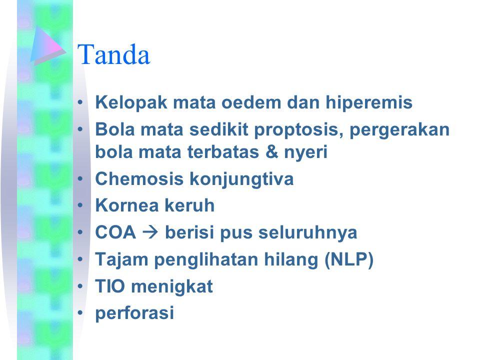 Tanda Kelopak mata oedem dan hiperemis