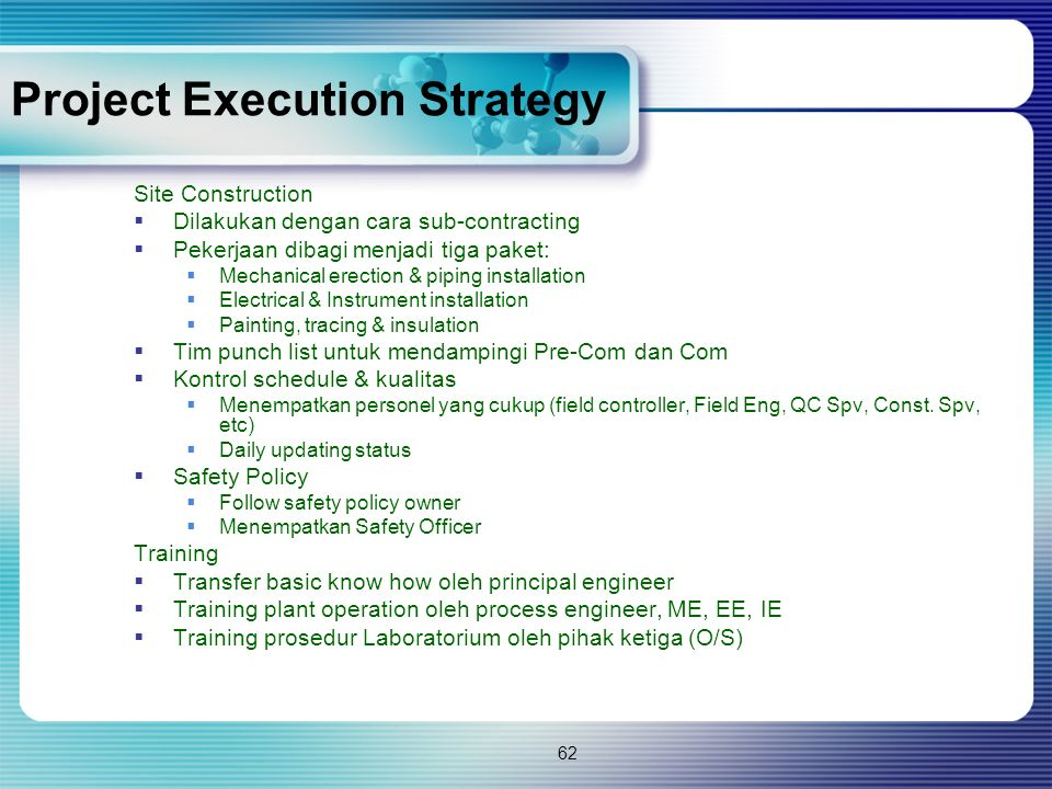Project Execution Strategy