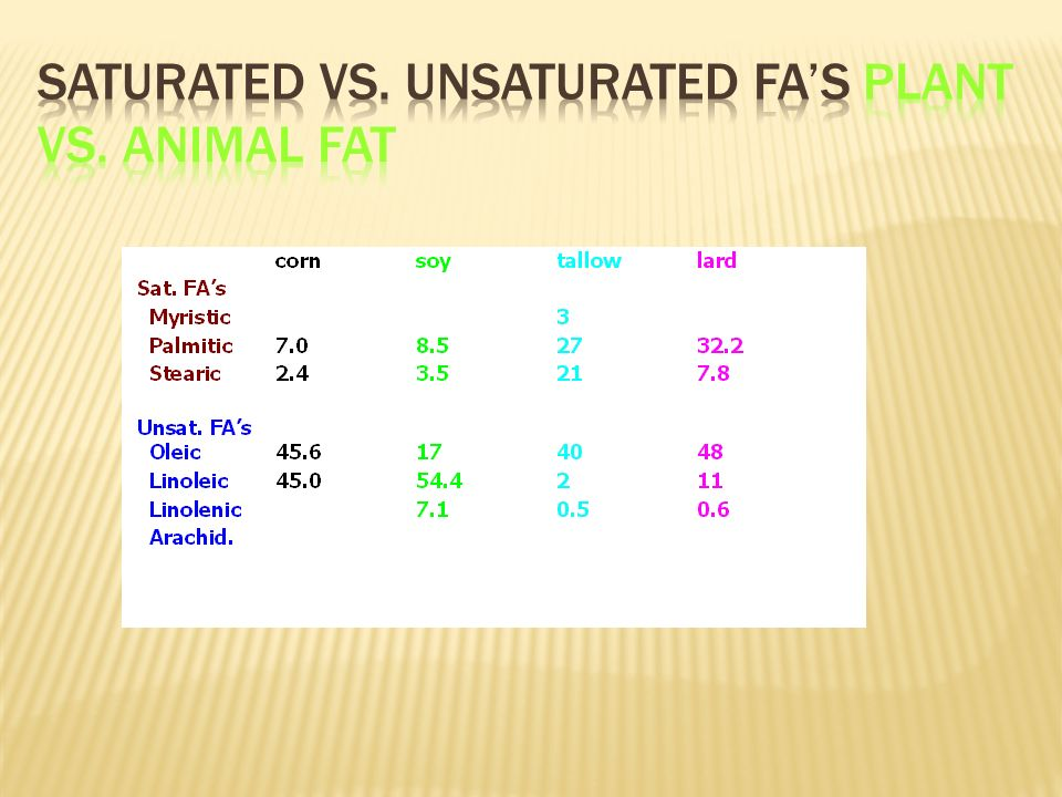 Saturated vs. Unsaturated FA's Plant vs. Animal Fat