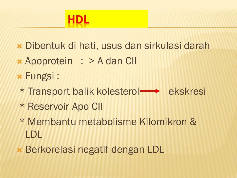 HDL Dibentuk di hati, usus dan sirkulasi darah