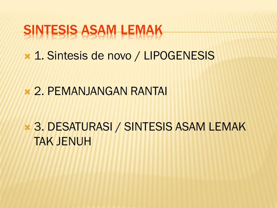 SINTESIS ASAM LEMAK 1. Sintesis de novo / LIPOGENESIS