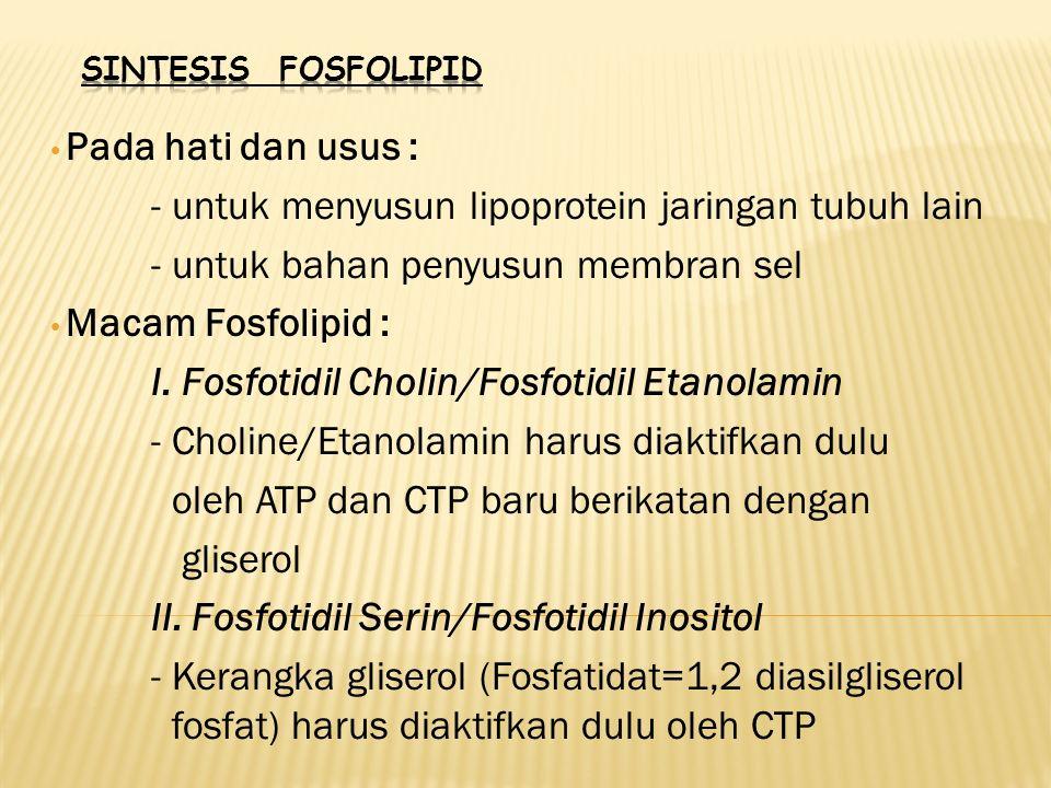 - untuk menyusun lipoprotein jaringan tubuh lain