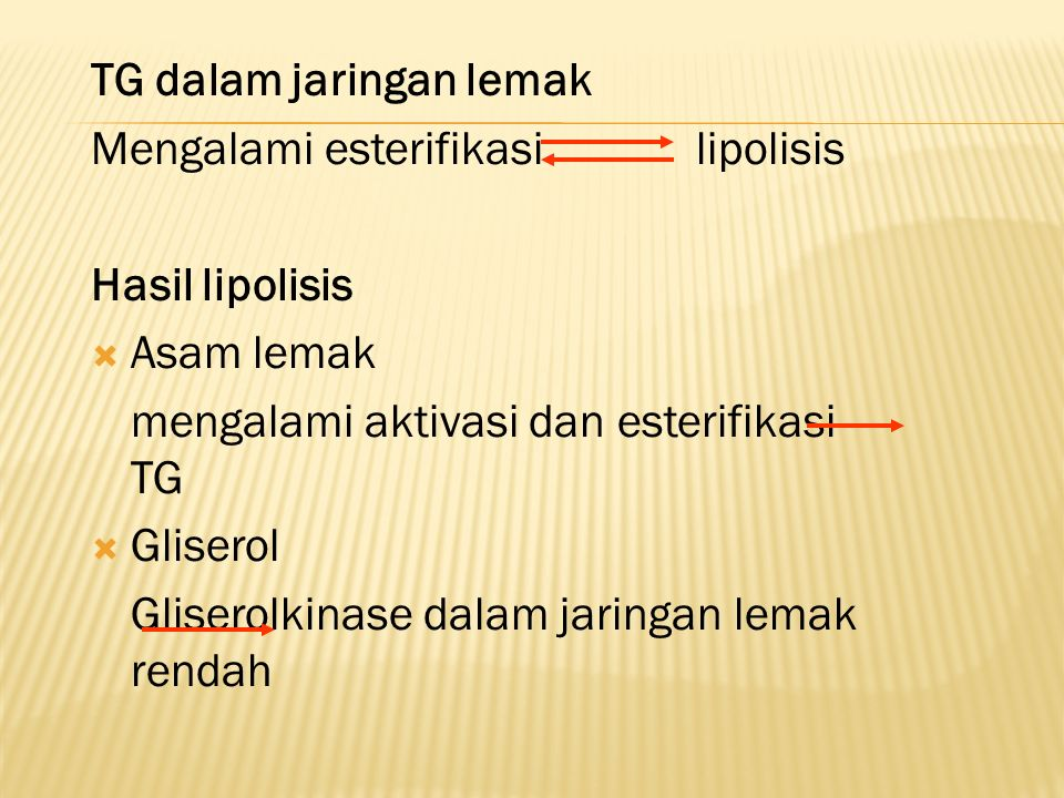 TG dalam jaringan lemak