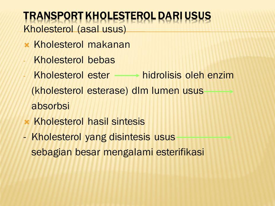 Transport kholesterol dari usus