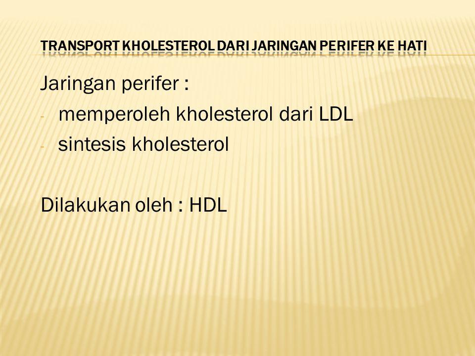 Transport kholesterol dari jaringan perifer ke hati