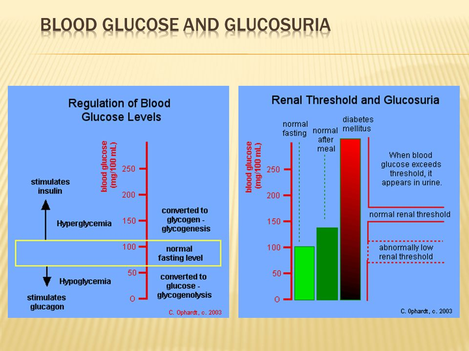 Blood Glucose and Glucosuria