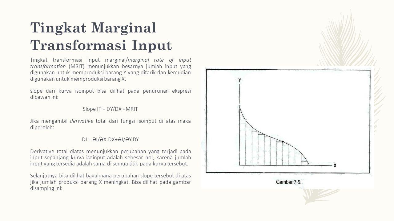 Tingkat Marginal Transformasi Input