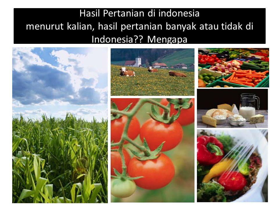 Hasil Pertanian di indonesia menurut kalian, hasil pertanian banyak atau tidak di Indonesia .