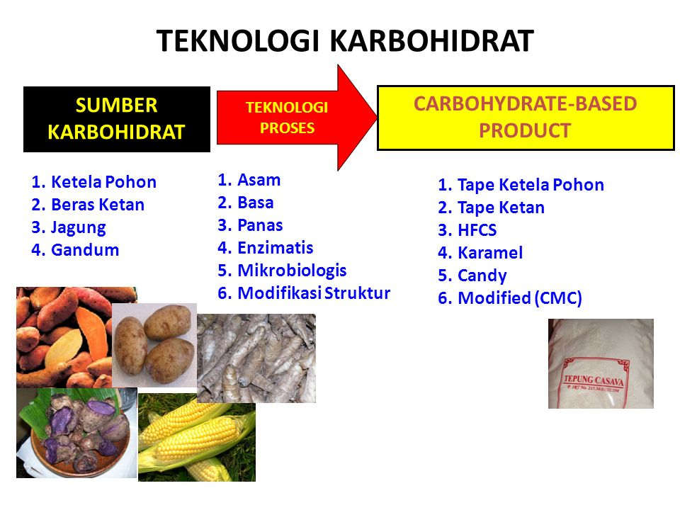 TEKNOLOGI KARBOHIDRAT