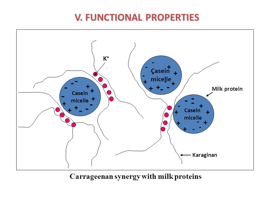V. FUNCTIONAL PROPERTIES