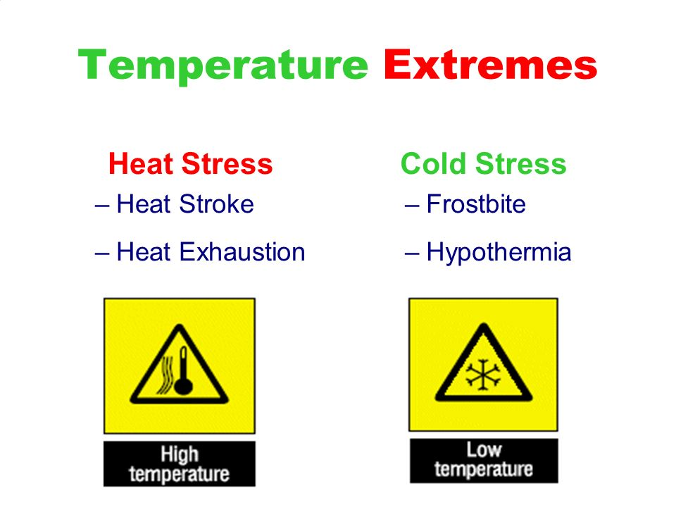 Temperature Extremes Heat Stress Cold Stress Heat Stroke