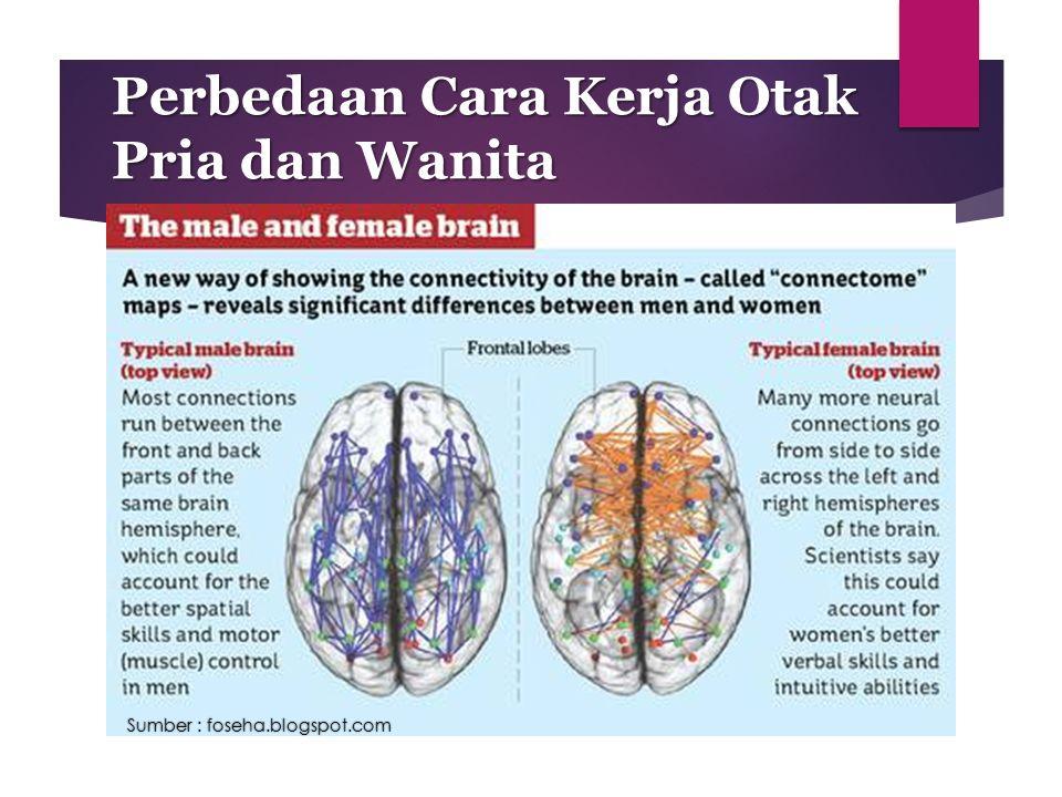 Perbedaan Cara Kerja Otak Pria dan Wanita