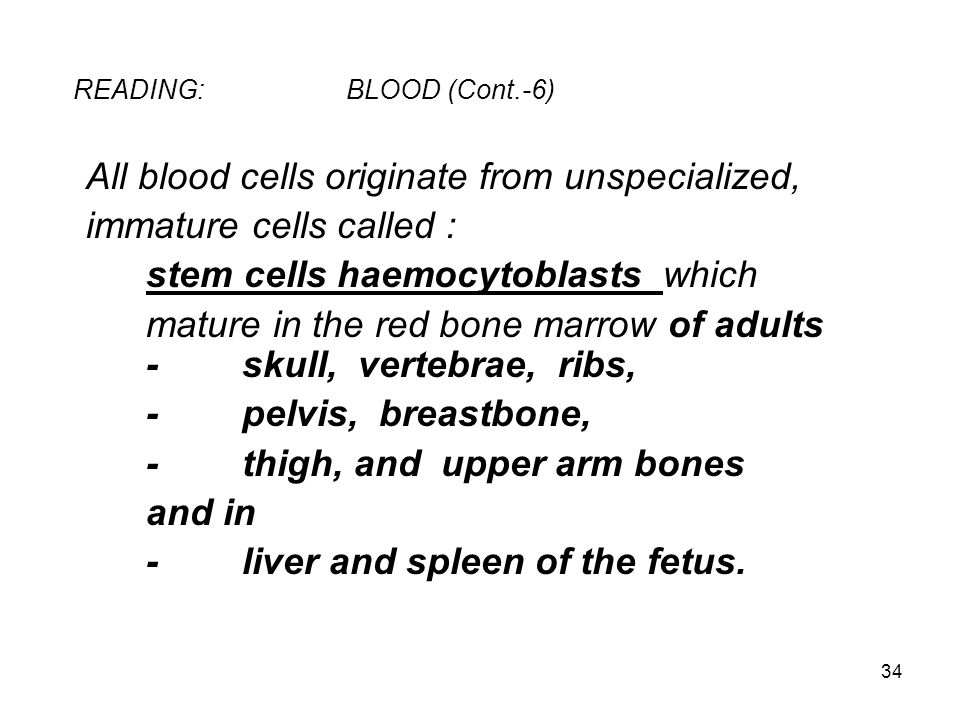 READING: BLOOD (Cont.-6)