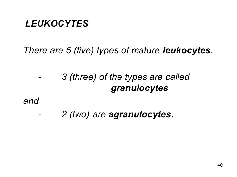 There are 5 (five) types of mature leukocytes.