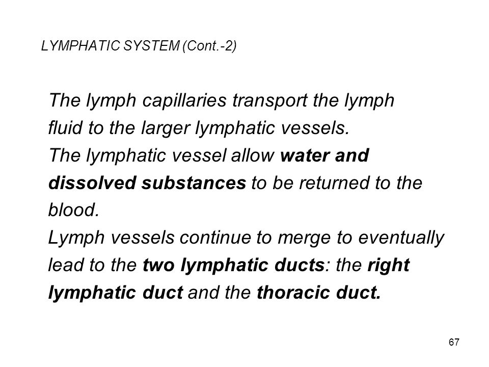 LYMPHATIC SYSTEM (Cont.-2)