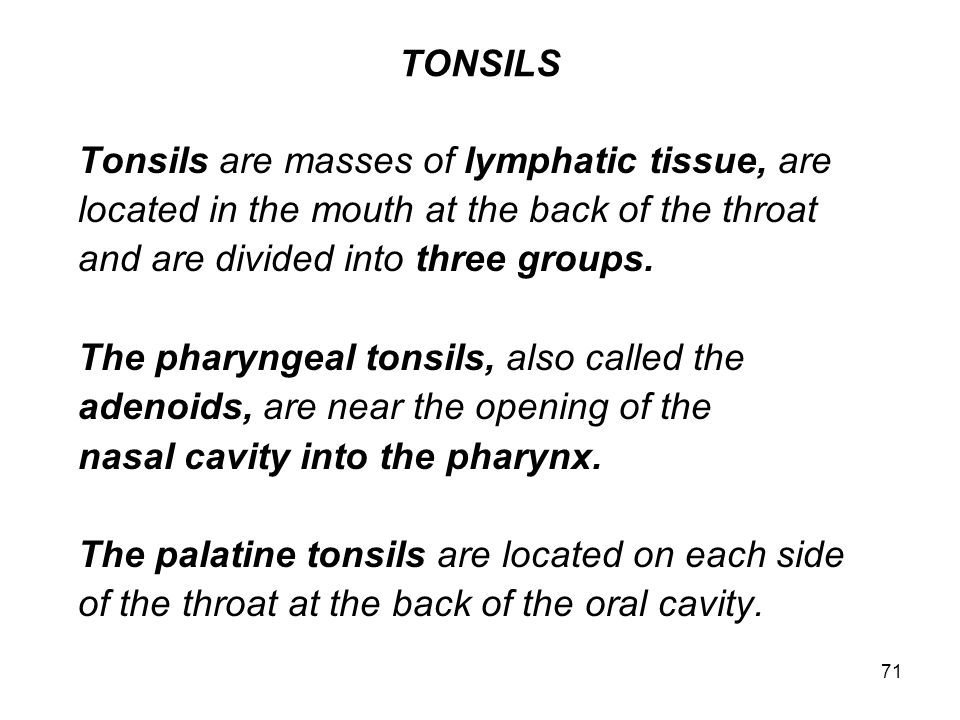 TONSILS Tonsils are masses of lymphatic tissue, are. located in the mouth at the back of the throat.