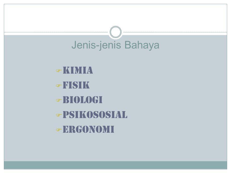 Jenis-jenis Bahaya Kimia Fisik Biologi Psikososial Ergonomi