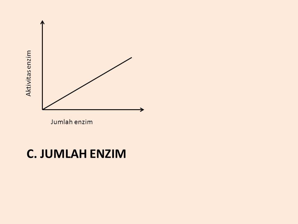 Aktivitas enzim Jumlah enzim c. Jumlah Enzim