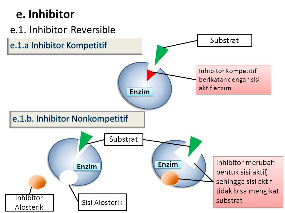e. Inhibitor e.1. Inhibitor Reversible e.1.a Inhibitor Kompetitif