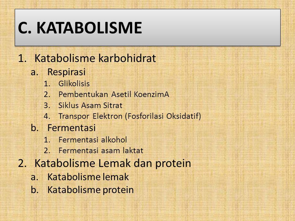C. KATABOLISME Katabolisme karbohidrat Katabolisme Lemak dan protein