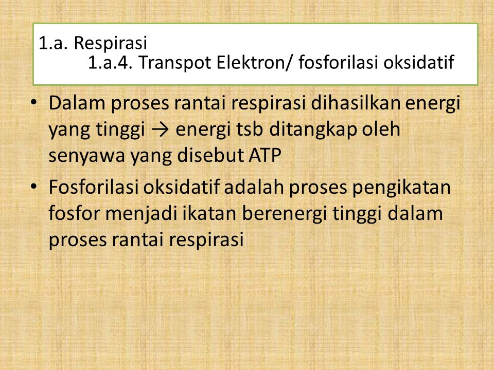 1.a. Respirasi 1.a.4. Transpot Elektron/ fosforilasi oksidatif