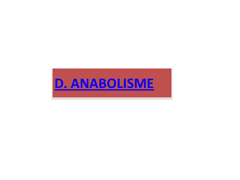 D. ANABOLISME