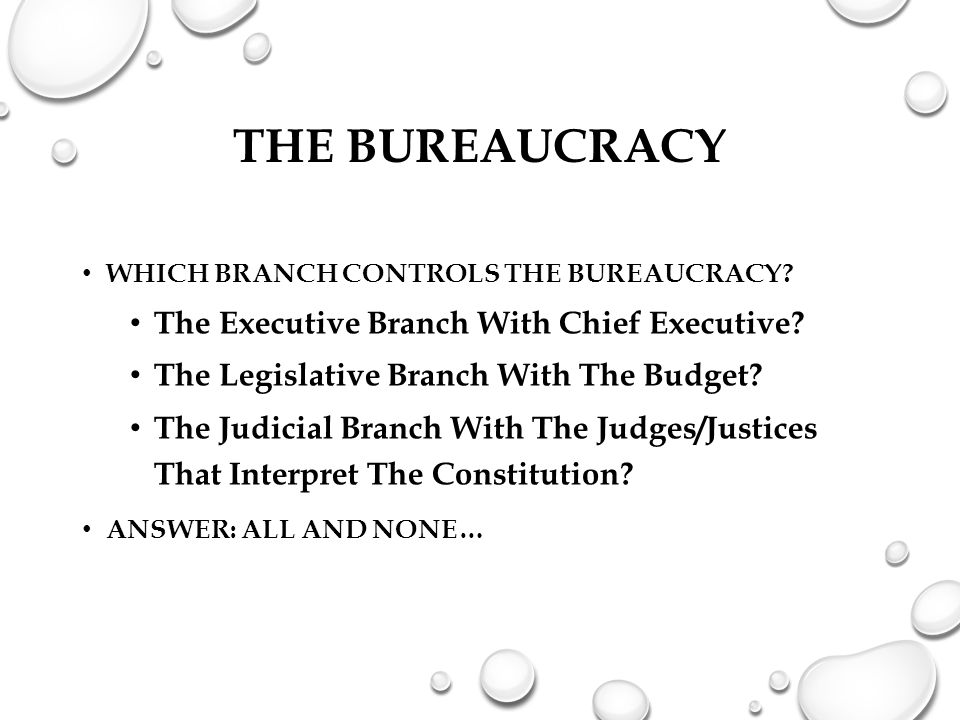 The Bureaucracy The Executive Branch With Chief Executive
