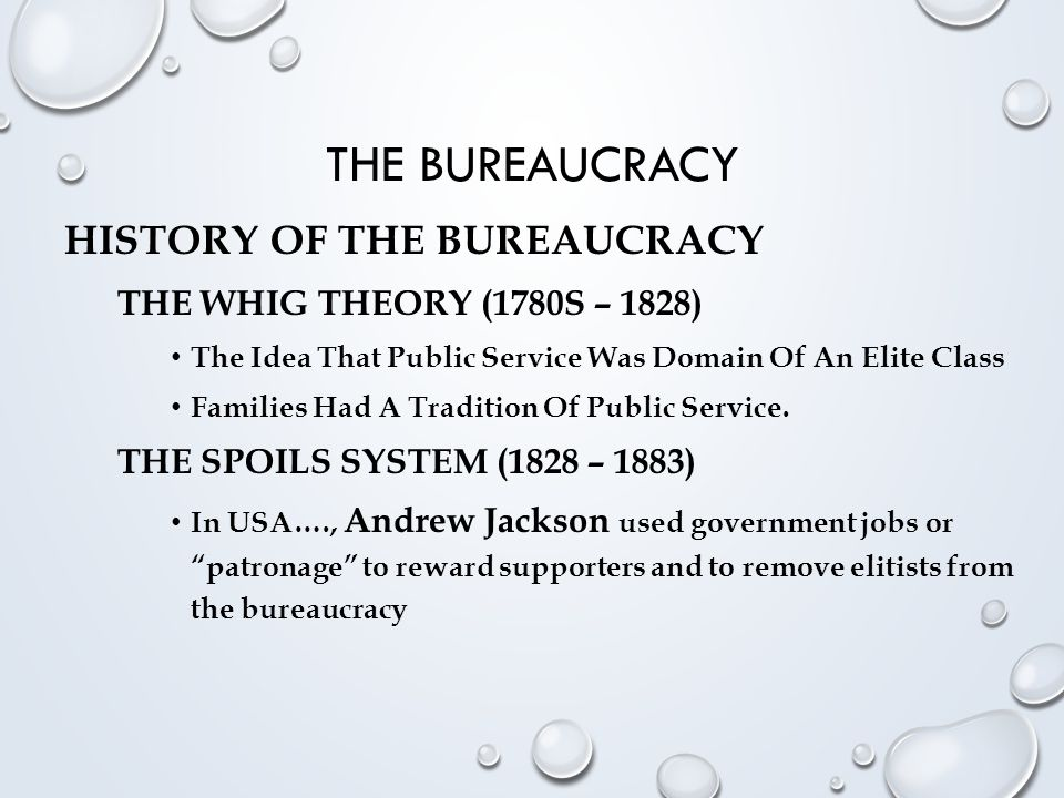 The Bureaucracy History of the Bureaucracy