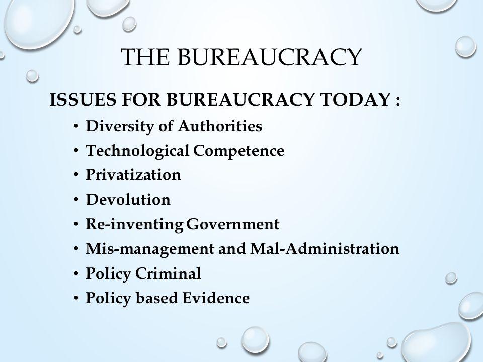 The Bureaucracy Issues for bureaucracy today :