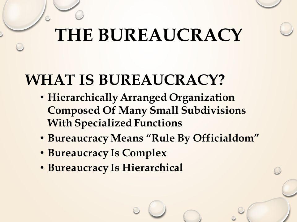 The Bureaucracy What is Bureaucracy