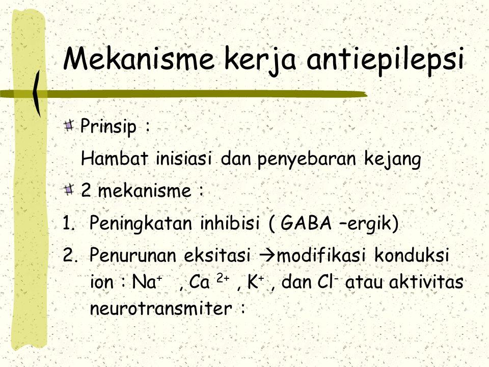 Mekanisme kerja antiepilepsi