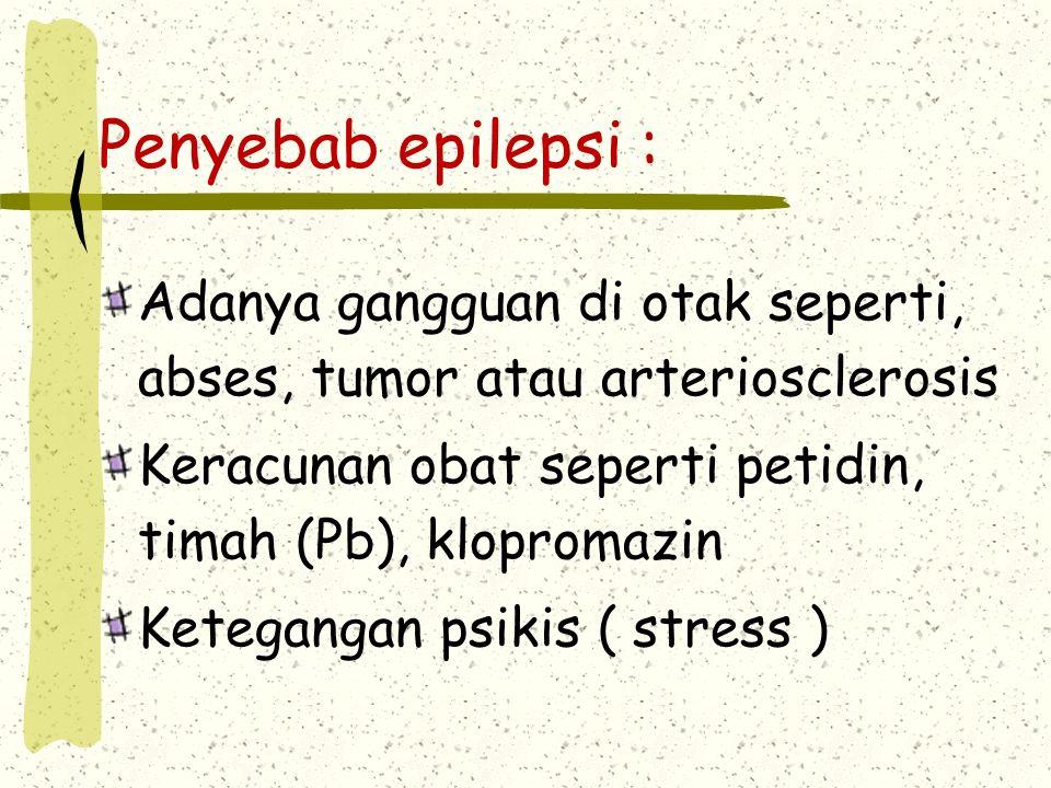 Penyebab epilepsi : Adanya gangguan di otak seperti, abses, tumor atau arteriosclerosis. Keracunan obat seperti petidin, timah (Pb), klopromazin.