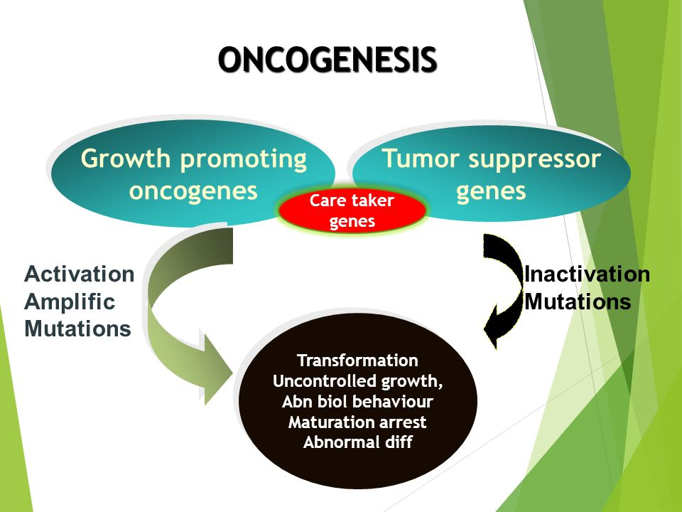 ONCOGENESIS Growth promoting Tumor suppressor oncogenes genes