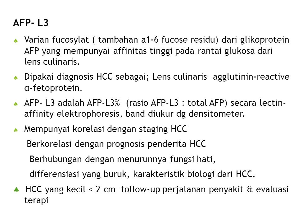 AFP- L3