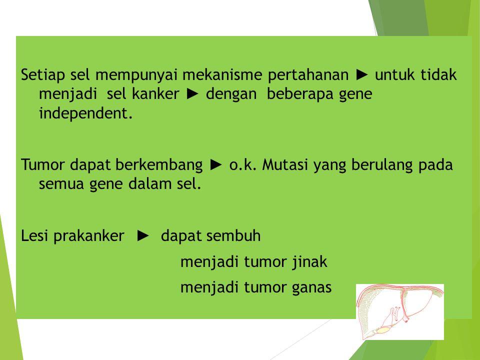 Setiap sel mempunyai mekanisme pertahanan ► untuk tidak menjadi sel kanker ► dengan beberapa gene independent.