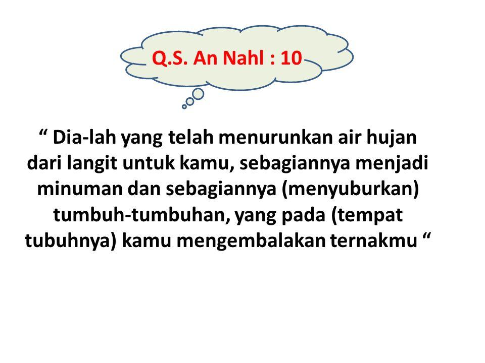 Q.S. An Nahl : 10