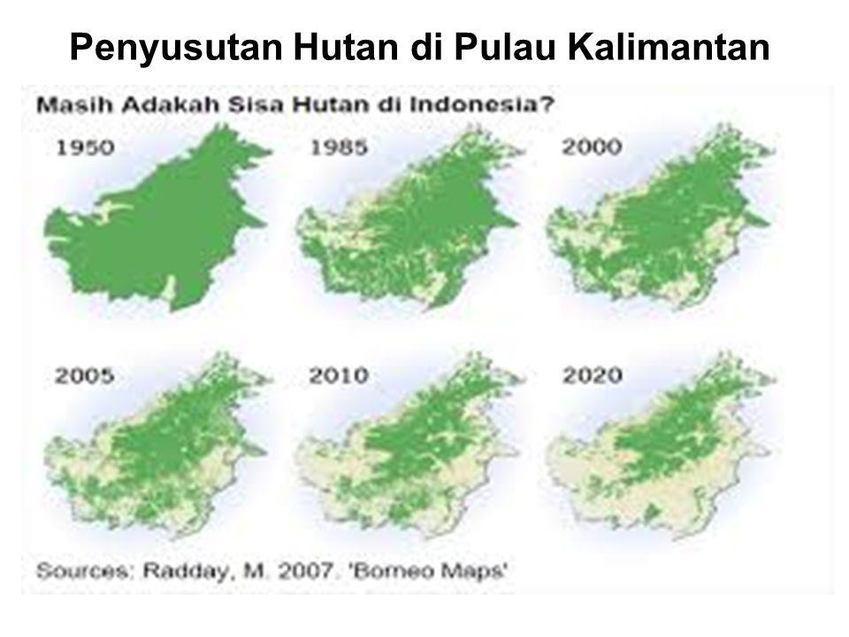 Penyusutan Hutan di Pulau Kalimantan