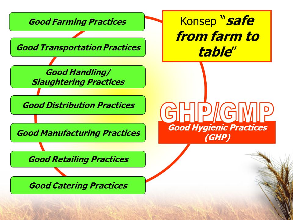 GHP/GMP Konsep safe from farm to table Good Farming Practices