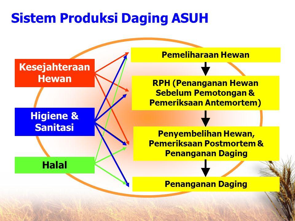 Sistem Produksi Daging ASUH